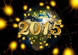 Meilleurs voeux pour l'année 2015 !
